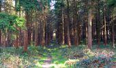 Trail Walk LONGPONT - en foret de Retz_32_Longpont_Vertes Feuilles_AR - Photo 43