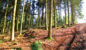 Trail Walk LONGPONT - en foret de Retz_32_Longpont_Vertes Feuilles_AR - Photo 156