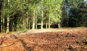 Trail Walk LONGPONT - en foret de Retz_32_Longpont_Vertes Feuilles_AR - Photo 154