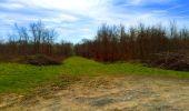 Trail Walk LONGPONT - en foret de Retz_32_Longpont_Vertes Feuilles_AR - Photo 98