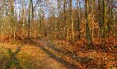 Trail Walk LONGPONT - en foret de Retz_32_Longpont_Vertes Feuilles_AR - Photo 171
