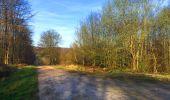 Trail Walk LONGPONT - en foret de Retz_32_Longpont_Vertes Feuilles_AR - Photo 38
