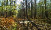 Trail Walk LONGPONT - en foret de Retz_32_Longpont_Vertes Feuilles_AR - Photo 60