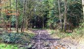 Trail Walk LONGPONT - en foret de Retz_32_Longpont_Vertes Feuilles_AR - Photo 102
