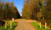 Trail Walk LONGPONT - en foret de Retz_32_Longpont_Vertes Feuilles_AR - Photo 21
