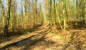 Trail Walk LONGPONT - en foret de Retz_32_Longpont_Vertes Feuilles_AR - Photo 69