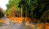 Trail Walk LONGPONT - en foret de Retz_32_Longpont_Vertes Feuilles_AR - Photo 163