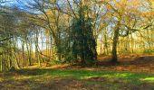 Trail Walk LONGPONT - en foret de Retz_32_Longpont_Vertes Feuilles_AR - Photo 31