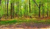 Trail Walk LONGPONT - en foret de Retz_32_Longpont_Vertes Feuilles_AR - Photo 132