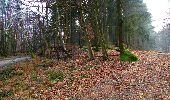 Trail Walk LONGPONT - en foret de Retz_32_Longpont_Vertes Feuilles_AR - Photo 148