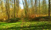 Trail Walk LONGPONT - en foret de Retz_32_Longpont_Vertes Feuilles_AR - Photo 64