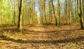 Trail Walk LONGPONT - en foret de Retz_32_Longpont_Vertes Feuilles_AR - Photo 68