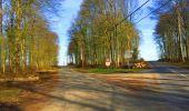 Trail Walk LONGPONT - en foret de Retz_32_Longpont_Vertes Feuilles_AR - Photo 55