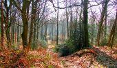 Trail Walk LONGPONT - en foret de Retz_32_Longpont_Vertes Feuilles_AR - Photo 153