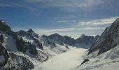 Trail Other activity CHAMONIX-MONT-BLANC - Col du Passon - Photo 4
