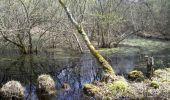 Randonnée Marche NOISY-SUR-ECOLE - GLM-150415 - Coulisses3pi - Photo 3