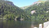 Randonnée Marche STOSSWIHR - Lac du Sciessrothried - Photo 1