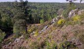 Trail Walk FONTAINEBLEAU - 3pi-150428 - DésertApremont-Jupiter - Photo 3