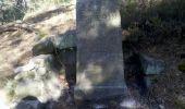 Trail Walk FONTAINEBLEAU - 3pi-150428 - DésertApremont-Jupiter - Photo 1