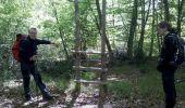 Trail Walk FONTAINEBLEAU - 3pi-150428 - DésertApremont-Jupiter - Photo 8