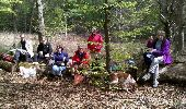 Trail Walk FONTAINEBLEAU - 3pi-150428 - DésertApremont-Jupiter - Photo 11