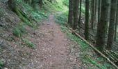 Randonnée Marche FELLERING - kruth - Photo 8