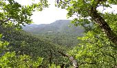Trail Walk DIEULEFIT - les huguenot 2 - Photo 3
