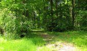 Randonnée Marche LONGPONT - en foret de Retz_33_Longpont_Vouty_Faverolles_AR - Photo 95
