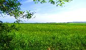 Randonnée Marche LONGPONT - en foret de Retz_33_Longpont_Vouty_Faverolles_AR - Photo 50