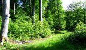 Randonnée Marche LONGPONT - en foret de Retz_33_Longpont_Vouty_Faverolles_AR - Photo 37
