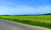 Randonnée Marche LONGPONT - en foret de Retz_33_Longpont_Vouty_Faverolles_AR - Photo 60