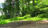 Randonnée Marche LONGPONT - en foret de Retz_33_Longpont_Vouty_Faverolles_AR - Photo 112
