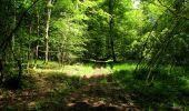 Randonnée Marche LONGPONT - en foret de Retz_33_Longpont_Vouty_Faverolles_AR - Photo 137