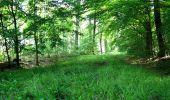 Randonnée Marche LONGPONT - en foret de Retz_33_Longpont_Vouty_Faverolles_AR - Photo 26