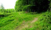 Randonnée Marche LONGPONT - en foret de Retz_33_Longpont_Vouty_Faverolles_AR - Photo 134