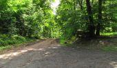 Randonnée Marche LONGPONT - en foret de Retz_33_Longpont_Vouty_Faverolles_AR - Photo 113