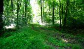 Randonnée Marche LONGPONT - en foret de Retz_33_Longpont_Vouty_Faverolles_AR - Photo 29