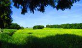 Randonnée Marche LONGPONT - en foret de Retz_33_Longpont_Vouty_Faverolles_AR - Photo 153