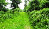 Randonnée Marche LONGPONT - en foret de Retz_33_Longpont_Vouty_Faverolles_AR - Photo 103