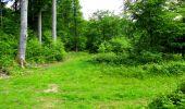 Randonnée Marche LONGPONT - en foret de Retz_33_Longpont_Vouty_Faverolles_AR - Photo 100