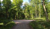 Randonnée Marche LONGPONT - en foret de Retz_33_Longpont_Vouty_Faverolles_AR - Photo 1
