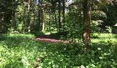 Randonnée Marche LONGPONT - en foret de Retz_33_Longpont_Vouty_Faverolles_AR - Photo 75