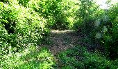 Randonnée Marche LONGPONT - en foret de Retz_33_Longpont_Vouty_Faverolles_AR - Photo 4