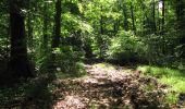 Randonnée Marche LONGPONT - en foret de Retz_33_Longpont_Vouty_Faverolles_AR - Photo 90
