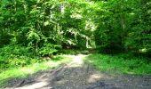 Randonnée Marche LONGPONT - en foret de Retz_33_Longpont_Vouty_Faverolles_AR - Photo 35
