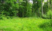 Randonnée Marche LONGPONT - en foret de Retz_33_Longpont_Vouty_Faverolles_AR - Photo 104