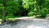 Randonnée Marche LONGPONT - en foret de Retz_33_Longpont_Vouty_Faverolles_AR - Photo 47