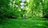 Randonnée Marche LONGPONT - en foret de Retz_33_Longpont_Vouty_Faverolles_AR - Photo 19