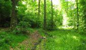 Randonnée Marche LONGPONT - en foret de Retz_33_Longpont_Vouty_Faverolles_AR - Photo 117
