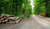 Randonnée Marche LONGPONT - en foret de Retz_33_Longpont_Vouty_Faverolles_AR - Photo 169
